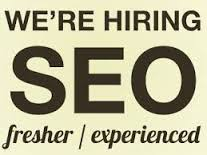 seo fresher jobs